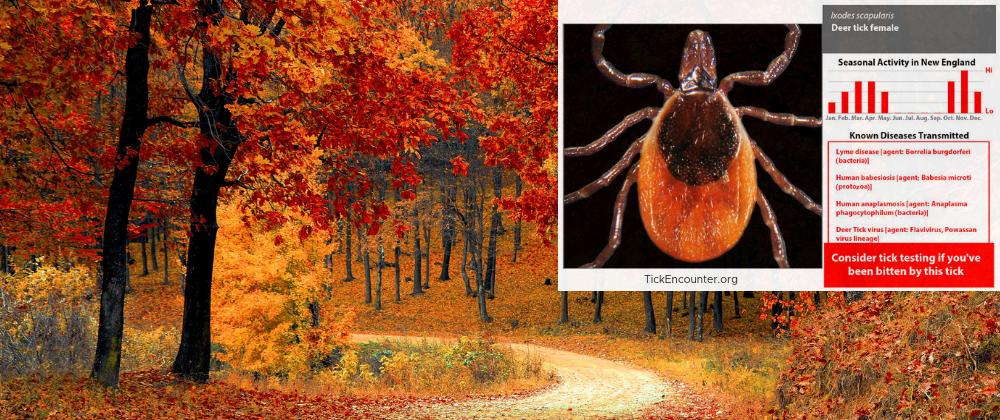 Fall Deer Tick Blog Post (1)