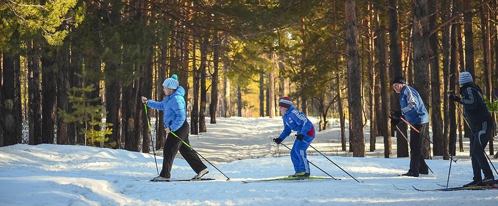 family-cross-country-skiing.jpeg
