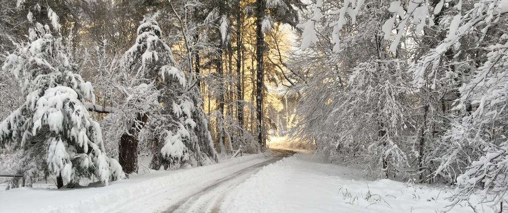 large-Snow Driveway