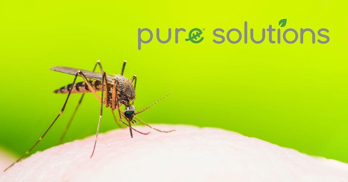 pure_mosquito_organic